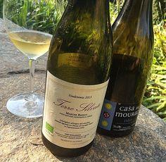 Uma taça de vinho por dia é super saudável. Só que não. (Parte Final – Os Naturebas)