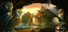 legend of the guardians the owls of gahoole backgrounds for desktop hd backgrounds, 1110 kB - Sheffield Backer