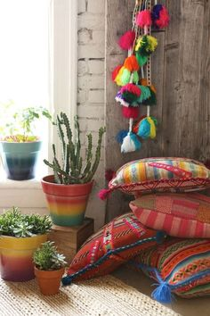 almofadas com estampas étinicas, vasos com cactos e suculentas