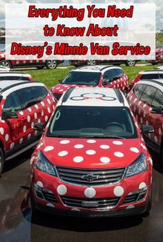 What You Need to Know  Disney Minnie Van Service