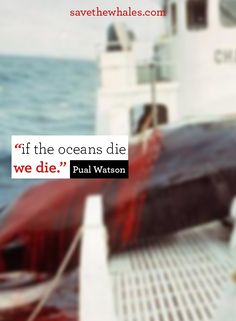"""if the oceans die, we die"" - Paul Watson. for educational purposes only."