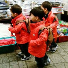 The stylist trio Song Il Gook, High Court Judge, Song Triplets, Superman Baby, Song Daehan, Energy Boosters, Baby Pictures, Cute Kids, Dads
