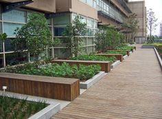 Shanghai International School Roof Garden