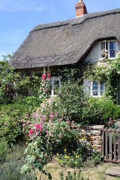 English cottage with hollyhocks