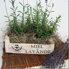 Do you have wood crates left over from clementines/tangerines? Turn them into French lavender crates!