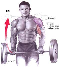 La importancia de la fase negativa. Musculación
