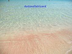 Sabbia corallina a San Vito Lo Capo (Tp)