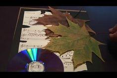 VIDEO: Blätter haltbar machen - so geht's