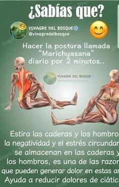 Simple Yoga Poses for Weight Loss Standing Yoga Poses, Postural, Yoga Training, Hard Yoga, Yoga Anatomy, Yoga Mantras, Easy Yoga Poses, Better Posture, Stretching Exercises