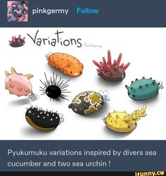 Pyukumuku variations inspired by divers sea cucumber and two sea urchin ! Pokemon Pins, Pokemon Memes, Pokemon Funny, Pokemon Stuff, Real Pokemon, Nintendo Pokemon, Pokemon Cards, Pokemon Fusion, Pokemon Breeds