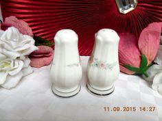 Rothschild by Noritake China Dinnerware Pattern #7293 Salt and Pepper set  #Noritake #Noritake