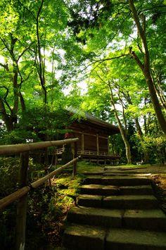 Chuson-ji, Iwate, Japan