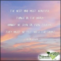The most beautiful things in life are very often not the things your eyes can behold or that your hands can touch, but rather the things that only your heart can feel.  #PalmettoWildlifeExtractors
