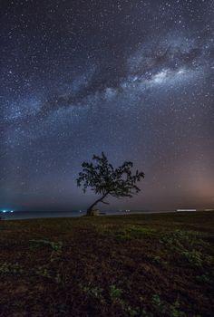 View of the milky way over a lonely tree at Teluk Bidara, Terengganu