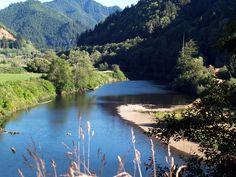 Nehalem, Oregon...where I grew up...so incredibly beautiful!