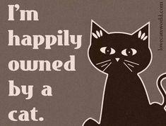 Tja, helemaal waar. Katten hebben geen baasjes, ze hebben bedienden.