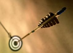 One word : ARCHERY. Whether you're a new archer, recurve, traditional or compound, or just. Mounted Archery, Archery Arrows, Bow Hunting, Tony Robbins, Hair Accessories, Sport, Greek Mythology, Darts, Arrows