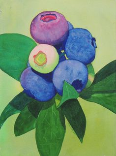 Blueberries Watercolor by Brina Beury