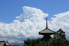 夏の風景 : 四季彩り~写真紀行