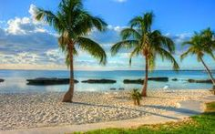 Discovers The Wonders Found In The Islands Of The Bahamas – Beaches To See Les Bahamas, Bahamas Cruise, Abaco Bahamas, Nassau, Caribbean Islands To Visit, Banana Beach, Best Cruise, Most Beautiful Beaches, Beautiful Places