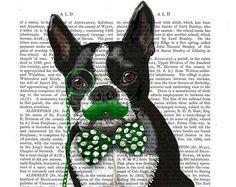 Boston Terrier Green Mustache & monocle