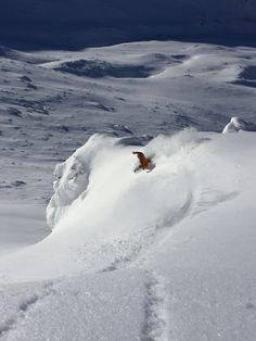 Bryan Fox scoring fresh pow in Japan yesterday.  Photo: Kobayashi #QuikSnow quiksilver.com/snow