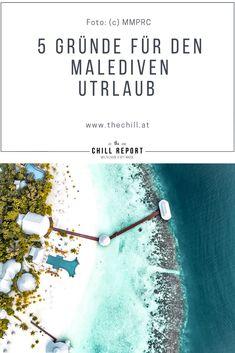 5 Gründe Malediven Urlaub - The Chill Report empfiehlt Luxury, Movies, Movie Posters, Air Pollution, Surfing, Films, Film Poster, Cinema, Movie