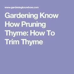 Gardening Know How Pruning Thyme: How To Trim Thyme