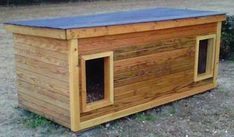 Penny & Brando - North Carolina:  several years of being tried and tested, this dog house has been proven to be the most comfortable and the safest home you can build for your beloved dogs.