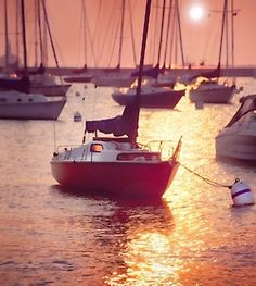 Gypsy Living Traveling In Style  Serafini Amelia  Sailing