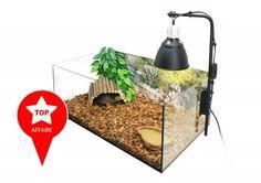 Kit complet Terrarium Naturel pour tortue de terre 60 x 35 x 23cm_0