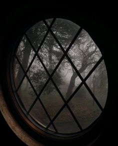 warm-and-cozy-autumn: studiointhewoods: Magical view out of my. Autumn Aesthetic, Witch Aesthetic, Cozy Aesthetic, Gothic Aesthetic, Aesthetic Beauty, Slytherin Aesthetic, Dark Paradise, Autumn Cozy, Dark Autumn