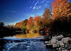Canada - Blaze of fall foliage, Crooks Hollow, near Hamilton, Ontario