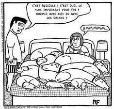 21 bandes dessinées qui parleront à tout propriétaire de chien(s) : comme la 12 !
