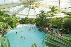 At a blissful 29.5°C the main wave pool is the heart of what we have to offer. You can spend all day in our Subtropical Swimming Paradise.