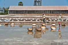 Les salines de Kampot - Du sel et de la sueur