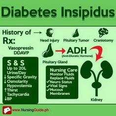 essay on diabetes insipidus