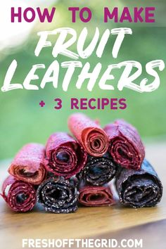 3 easy Fruit Leather recipes to make in a dehydrator. Strawberry Rhubarb, Blueberry Banana & Chia Seed, and Raspberry Peach. These make great hiking snacks for a day outdoors! Naturally sweetened, Vegan + Gluten free! Backpacking food | Healthy Snacks