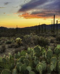 Gate's Pass, Tucson, Arizona