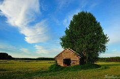 Just like the surroundings of my grandparents home, even that old barn, today protected by preserving laws in Finland. Precious haven where renew my spirit Places To See, Places Ive Been, Beautiful Places To Travel, Countries Of The World, Fences, Farm Life, Homeland, Grandparents, Barns