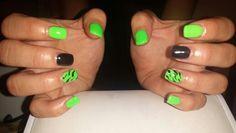 Zebra verde fluo