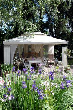 Voikukkapelto: paviljonki