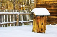 Honeybee Hives: Wintering Bees