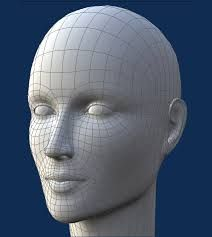 Image result for 3d human facial topology