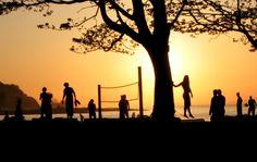 Sunset silouettes pe
