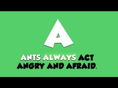 Alphabet Animals Song Video - YouTube ALLITERATION