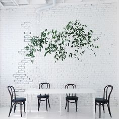 Love the illusion of the tree #welove #interior #art #tree