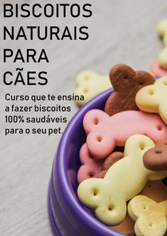 Aprenda neste curso receitas de biscoitos naturais e saudáveis para seu cão!  #pet #cães #cão #dog #alimentação #animal #petiscos #golden #retrievers #golden-retrievers #beagle #filhotes #filhote #adestramento #fofinhos #de-raça