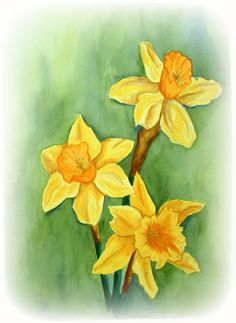 Daffodils - watercolor painting 1985