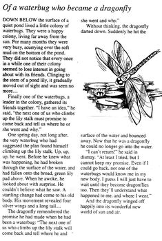 This story was read at the funeral of a friend by her 12 year old daughter.